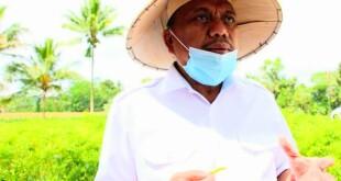 Gubernur Sulut Olly Dondokambey.(Foto: hbm)